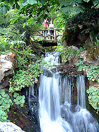 Cascade dans le jardin de la Jaysinia